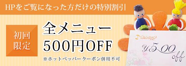 初回限定全メニュー500円OFF